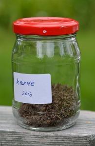 Karve2