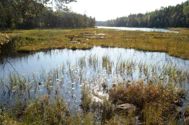 skålsjøen1