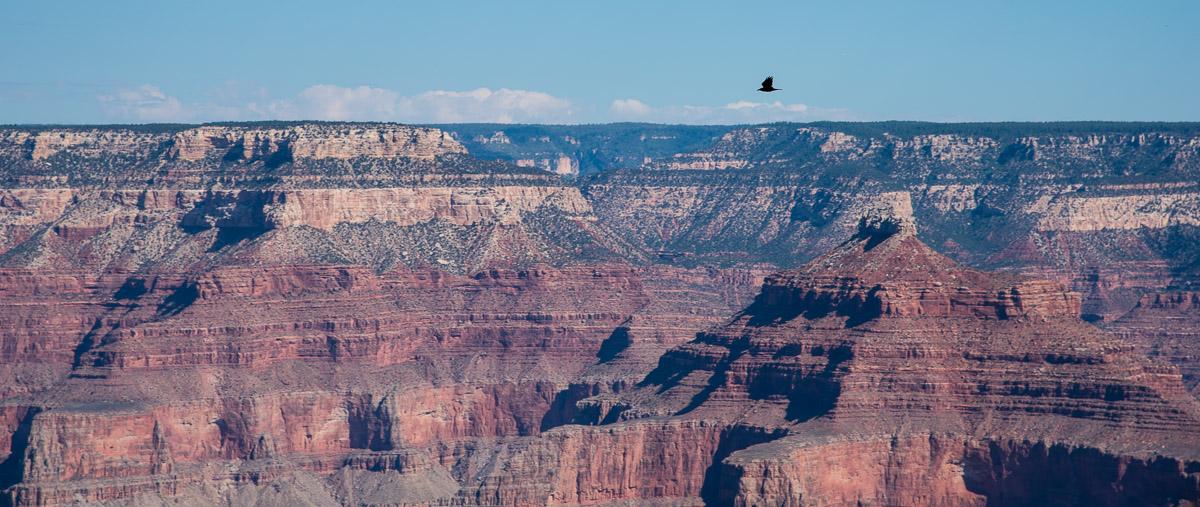 Grand Canyon  Den Kjempedigre Klfta  Perogkari