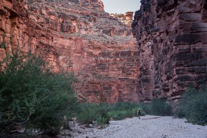 Grand-Canyon-havasupai-1