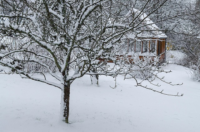 snøhage2