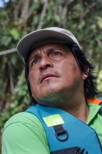 Amazonasluiz