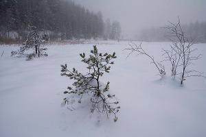 skitur16_5