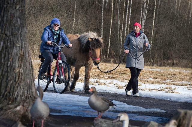 østensjø_sykkel