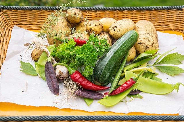 grønnsakerfrahagen